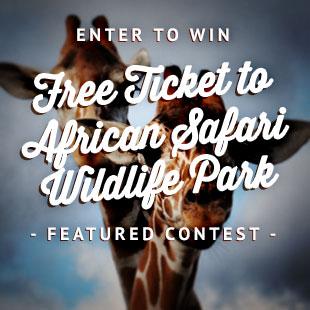 african_safari_detroit