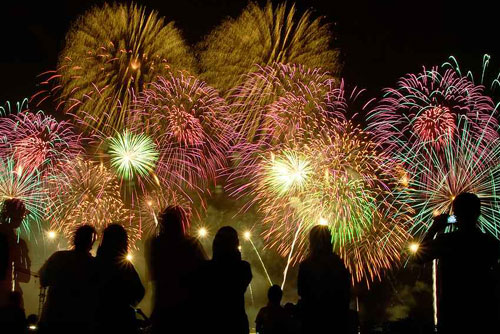 Pro Fireworks of Michigan | Coupons to SaveOn Retail