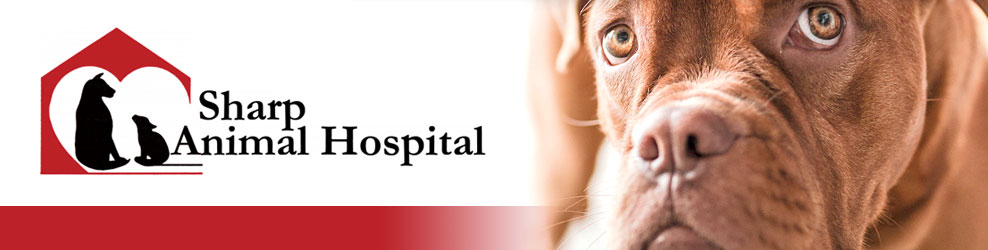 Sharp Animal Hospital & Dental Care