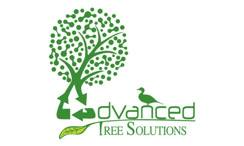 Advanced Tree Solutions Coupons in Troy, MI