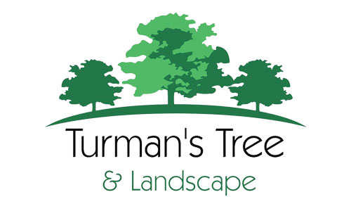 Turman's Tree & Landscape Coupons in Troy, MI