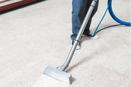 Carpet Cleaners In Metro Detroit Carpet Vidalondon