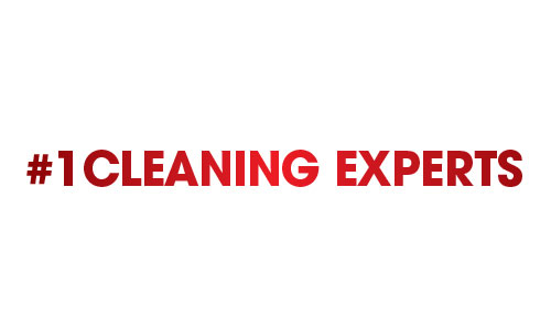 #1 Cleaning Experts Coupons in Troy, MI