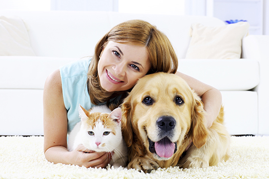 Sharp Animal Hospital & Dental Care Coupons