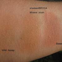 Becca Mineral Blush Swatch