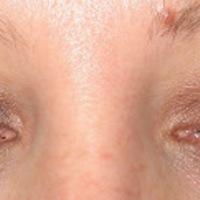 theBalm ShadyLady Eyeshadow Swatch