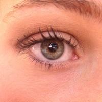 Stila Eye Shadow Swatch