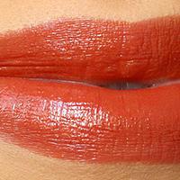 Nars autumn leaves lipstick swatch 001