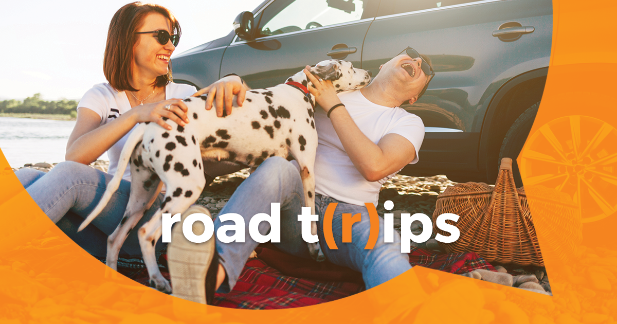 2019 08 12 blog couple with dog road trip
