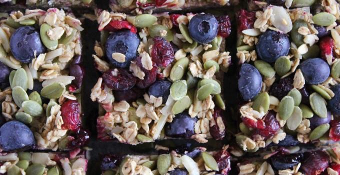 Gluten and Dairy Free Blueberry Oat Breakfast Bars