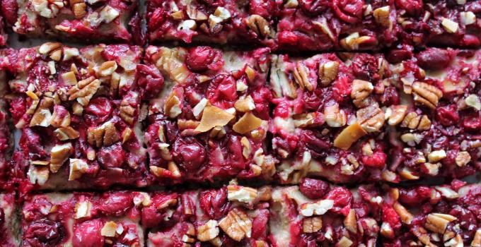 Cranberry Pecan Oat Coconut Chip Bars