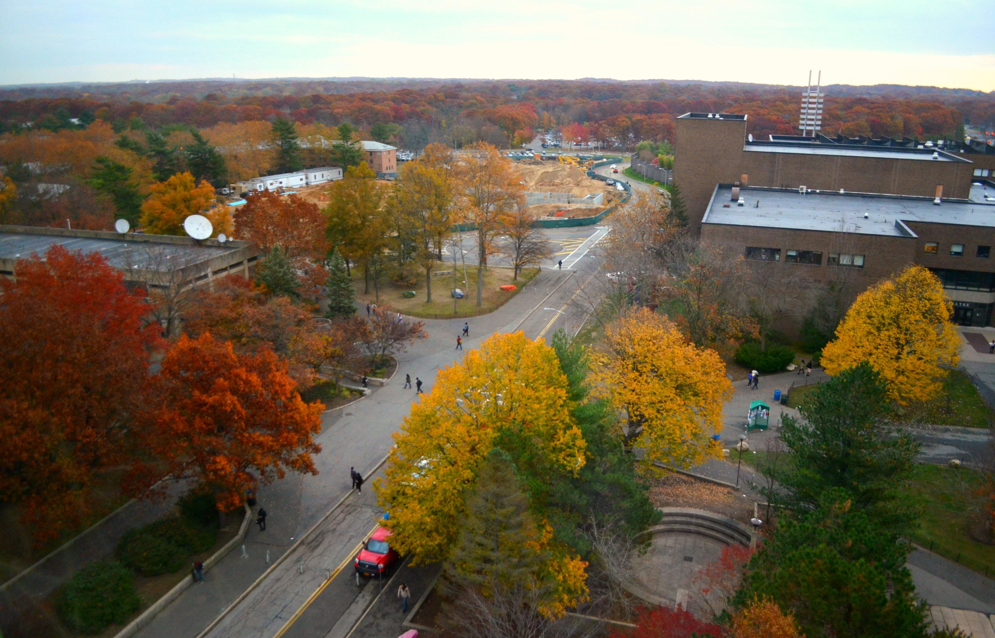 Stony brook university college-5782