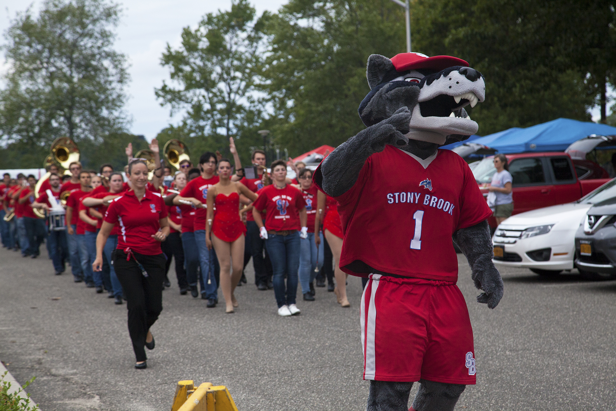 Wolfie leading the Spirit of Stony Brook marching band from