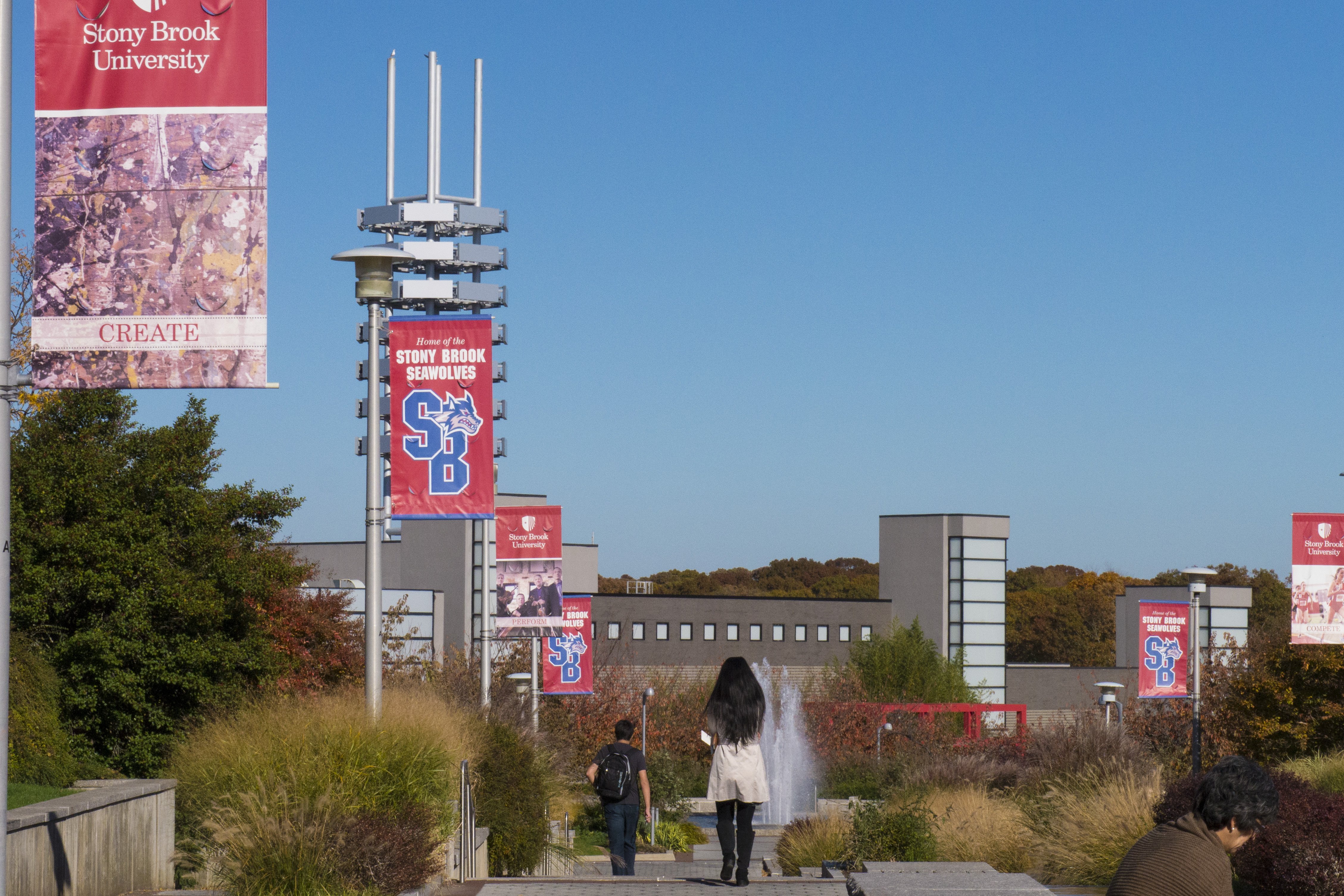 The state university of new york at stony brook-8611
