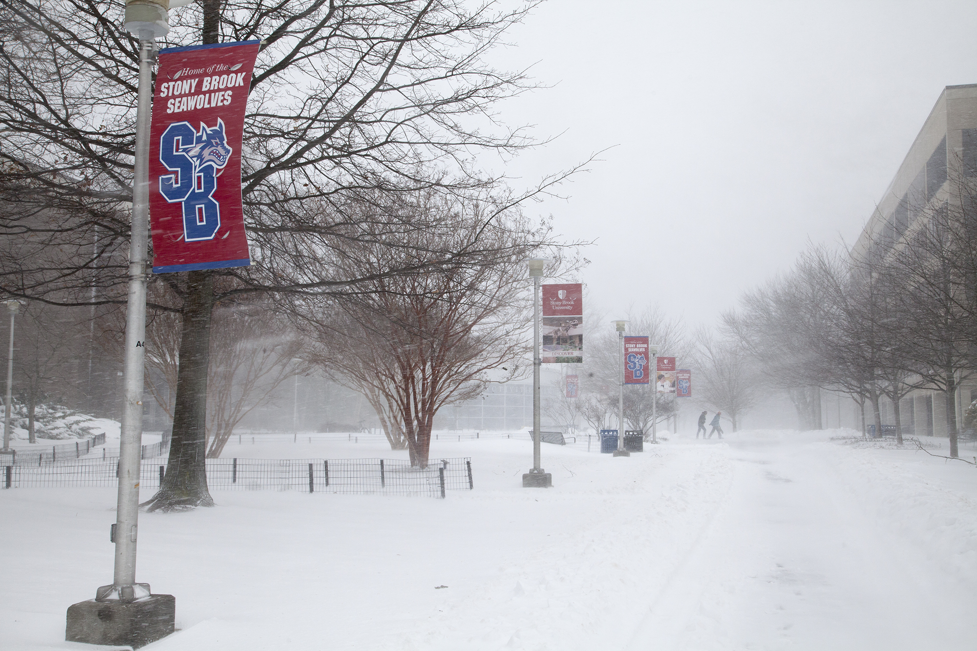 The walkway from the fountain to the SAC Circle at Stony Brook University during Winter Storm Jonas on Saturday, Jan. 23. CHRISTOPHER CAMERON/THE STATESMAN