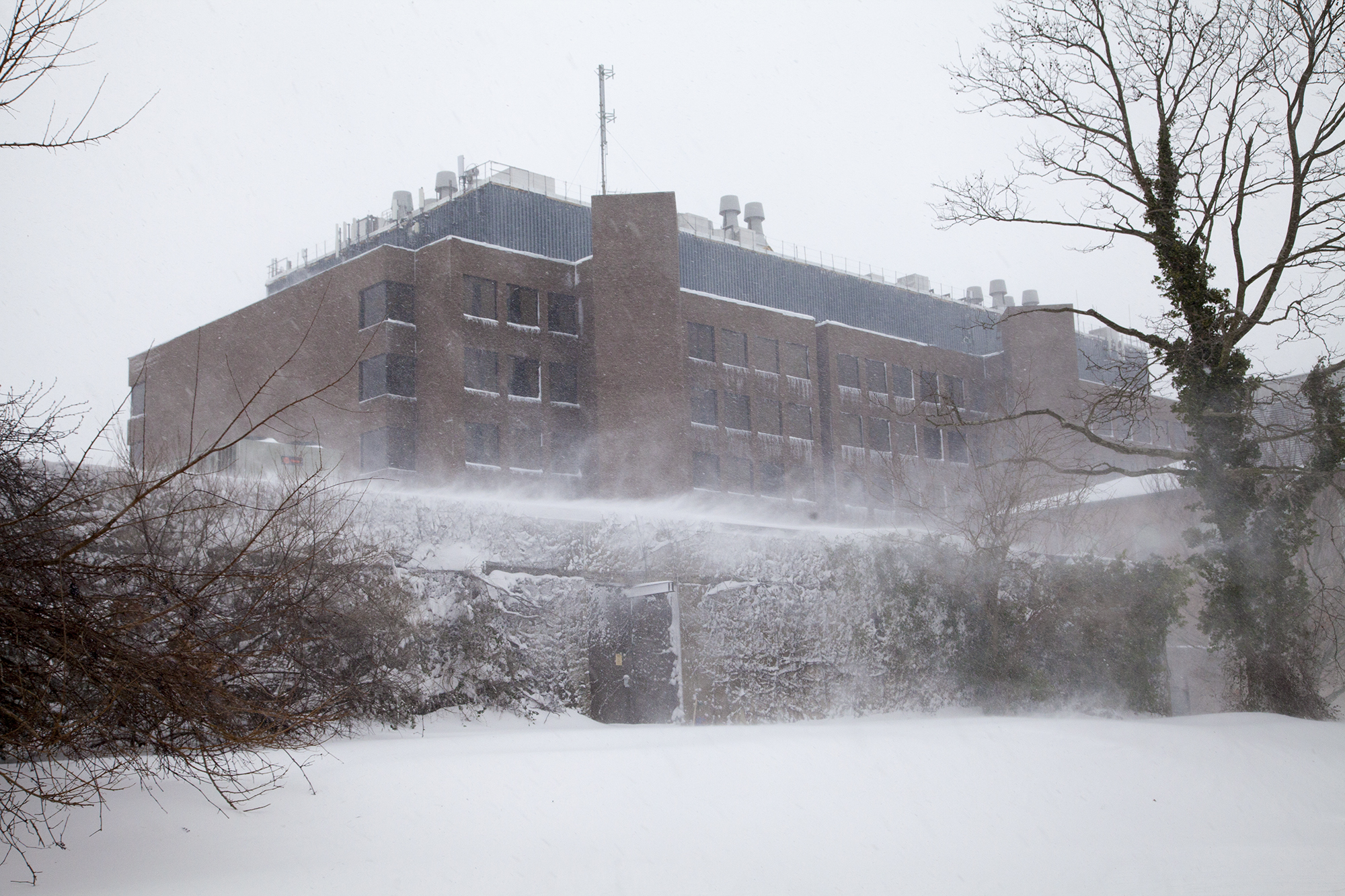 The Chemistry building  as seen from Harriman Hall at Stony Brook University during Winter Storm Jonas on Saturday, Jan. 23. CHRISTOPHER CAMERON/THE STATESMAN