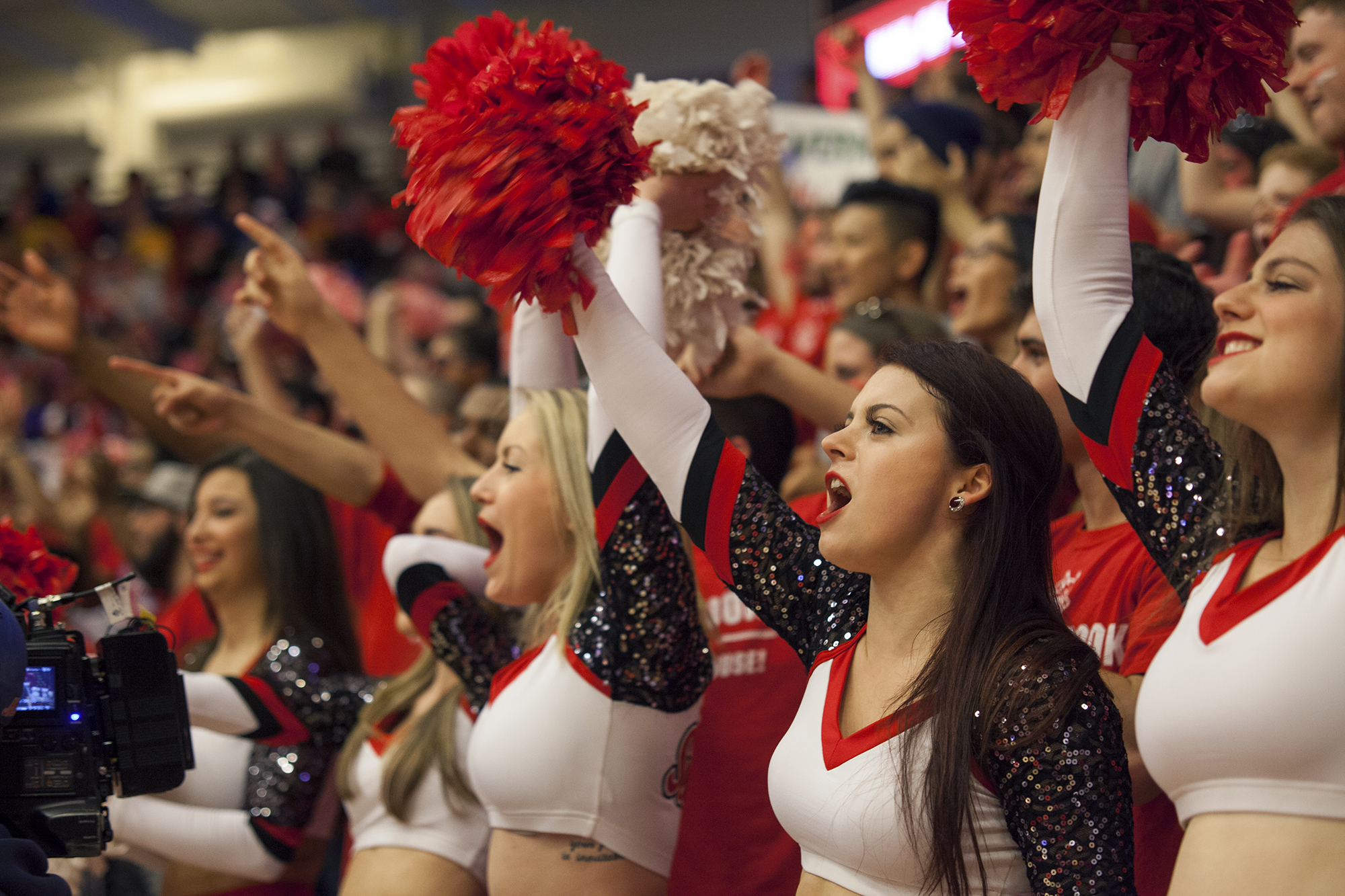The Stony Brook Dance Team cheers on the  Seawolves from courtside. CHRISTOPHER CAMERON/THE STATESMAN