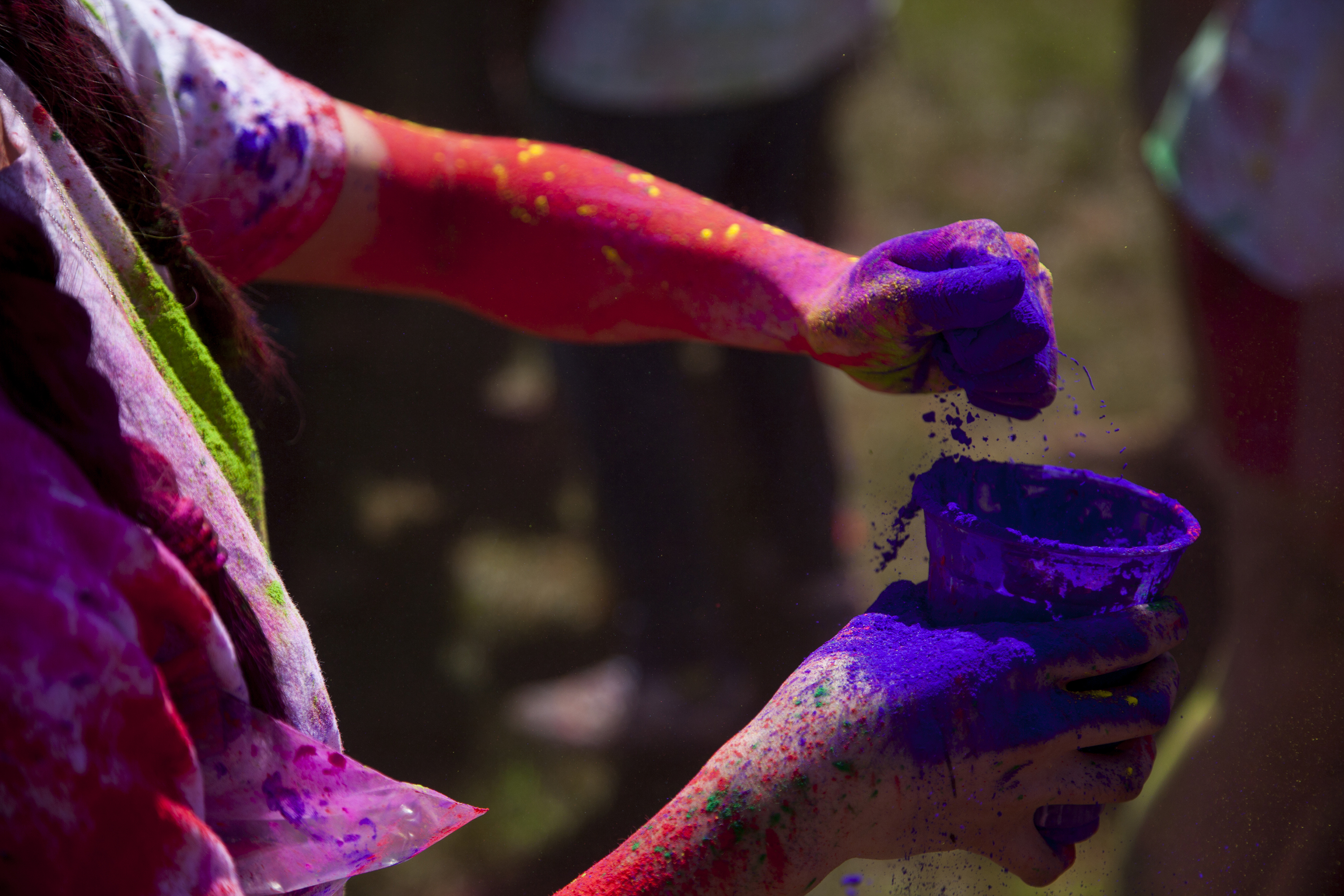 A student grabs colorful powder to throw on another student during the Holi festivities. ERIC SCHMID/THE STATESMAN