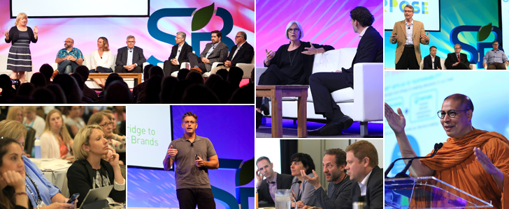 Highlights from #SB16sd | 2016 Sustainability Leaders Survey [Report]