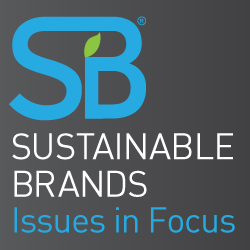 SB Issues in Focus