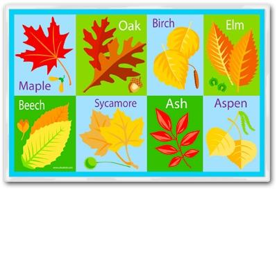 Olive Kids Laminate Placemat - Fall