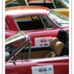 Carolina Trophy Vintage Road Rally
