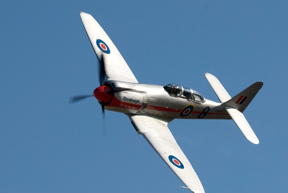 Brian Sander's Dreadnought Hawker Sea Fury Late Afternoon