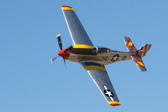 P-40N Parrothead of John-Curtiss Paul