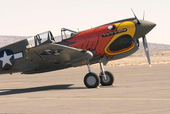 P-40 Parrothead