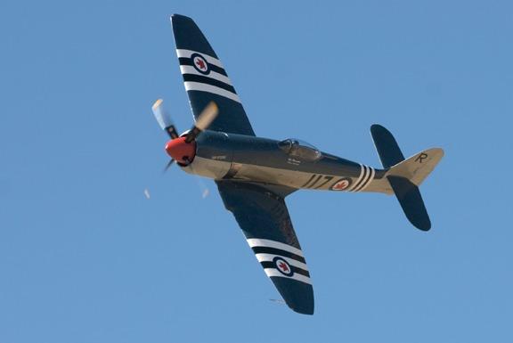 Bad Attitude Hawker Sea Fury - Doug Matthews