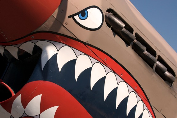 P-40 Shark Teeth