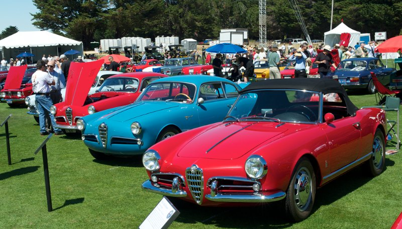 Some of the many Alfa Romeos that turned out.