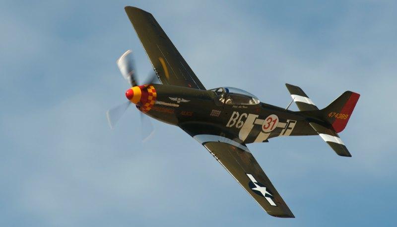 Unlimited. P-51D Mustang, 'Speedball Alice'. Rob Gordon.