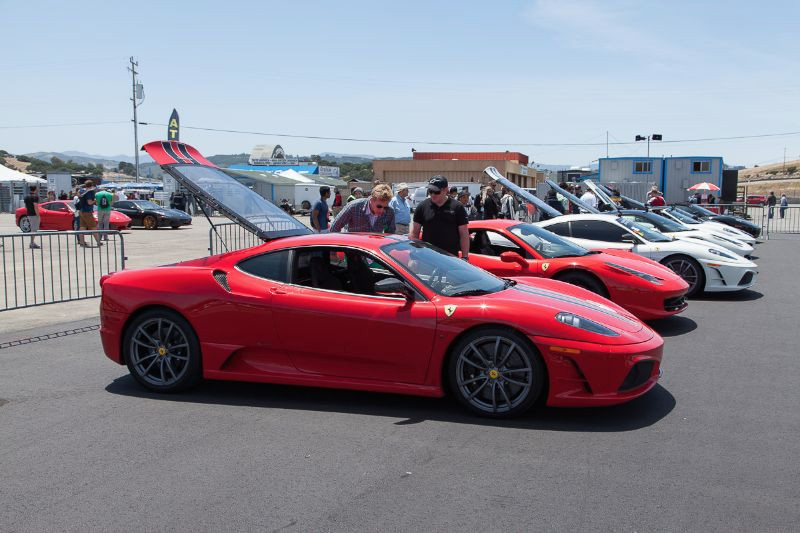 The Ferrari corral had some nice examples of Cavallino Rampantes, including this F430 Scuderia