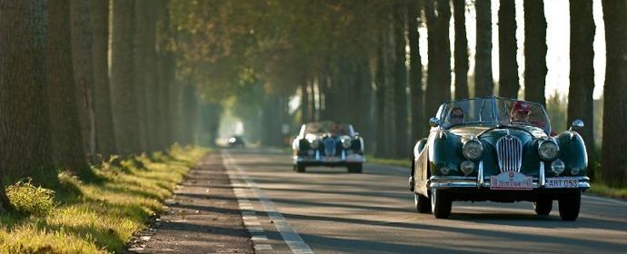 Jaguar XK140 rally picture