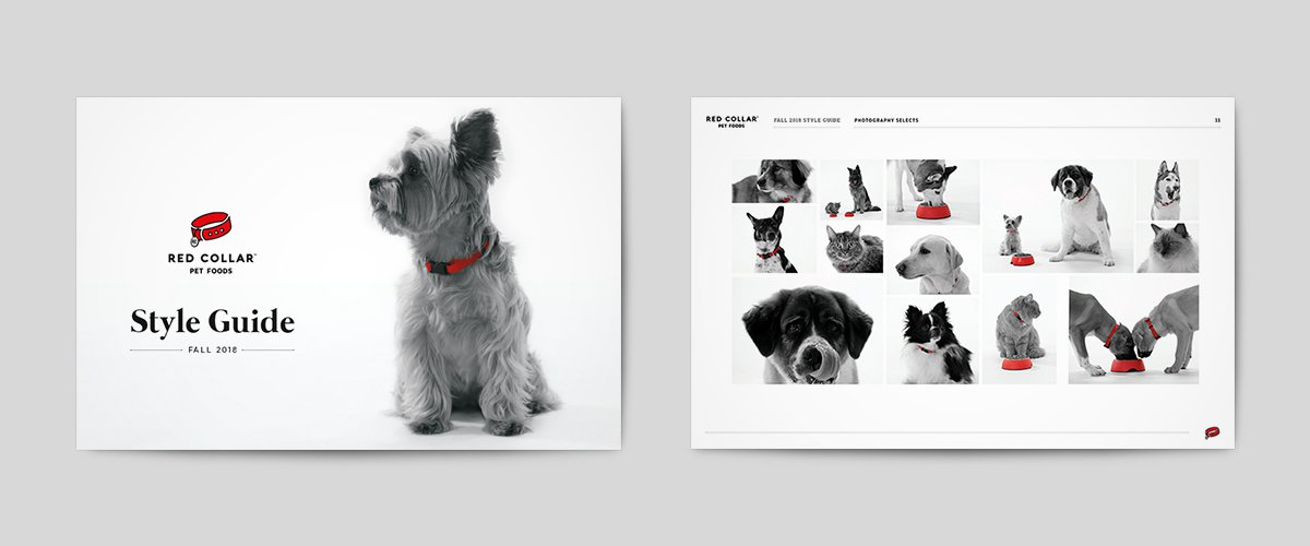 Red Collar - style guide v1 - carousel-1