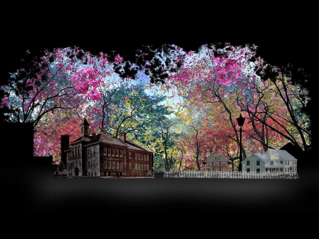 color_blossoms