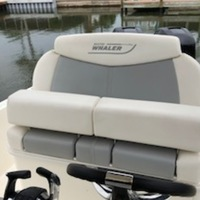 2016 Boston Whaler Dauntless, 4