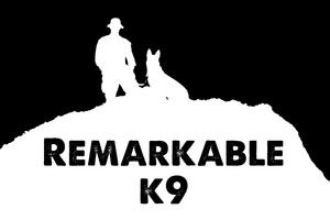 Remarkable K9