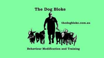 The Dog Bloke