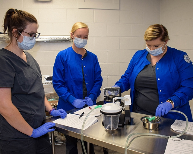 Veterinary Medical Technology students practice using suction tools during class.