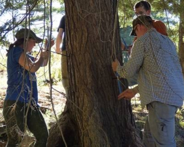 Our three campuses give students access to the rich ecosystems we're part of – they do fieldwork at the Paul Smith's College VIC and several other locations in the Adirondacks.