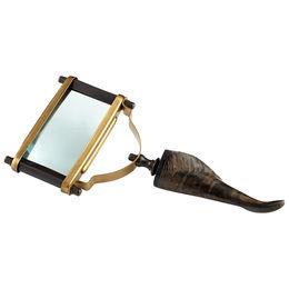 Enfoque Magnifier