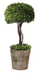 Uttermost Tree Topiary Preserved Boxwood