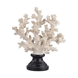 Aged White Coral on Stand - Short