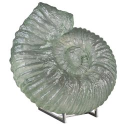Uttermost Ghita Shell Sculpture