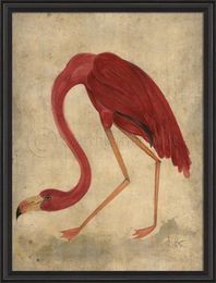 Framed Flamingo Art