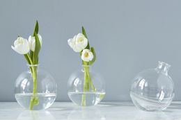 Glb102lc8 etuhome sphere vase clear 1