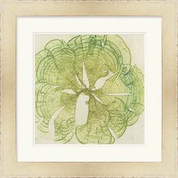 Brilliant Seaweed VIII