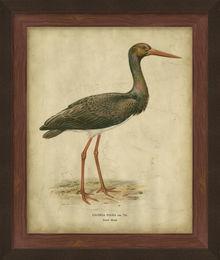 Embellished Vintage Heron I
